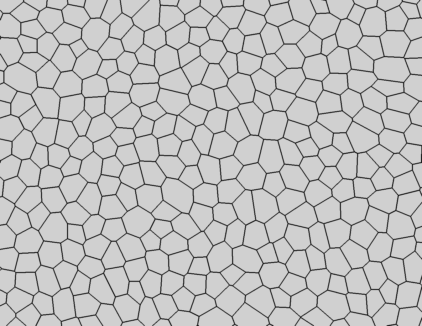extract dual polygon mesh using mkdual  the polygons are